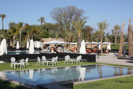 Pullman Marrakech Palmeraie Resort & Spa photo 5