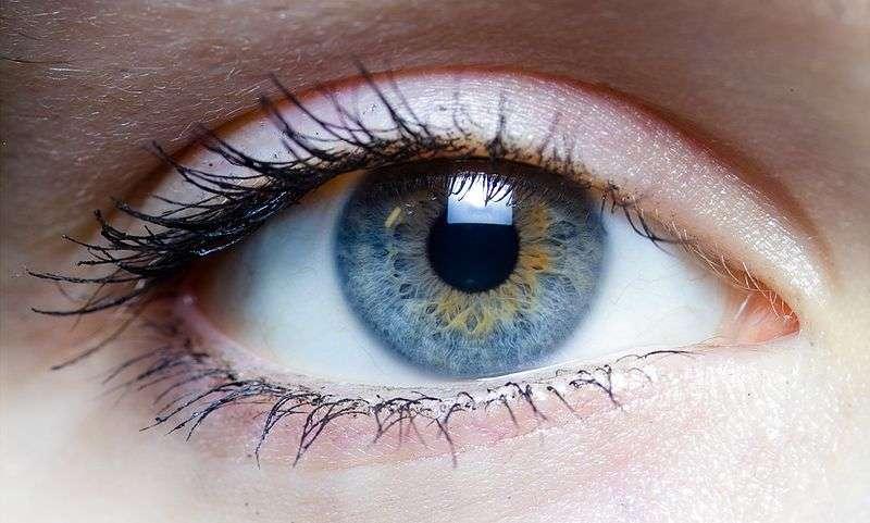 Zyoptix: Chirurgie oculaire