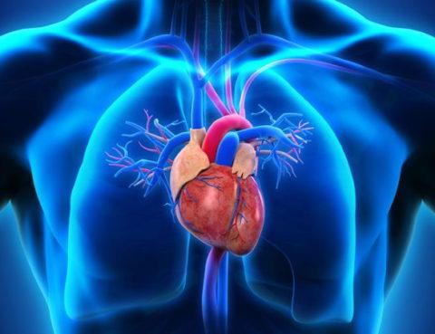 La résection ventriculaire