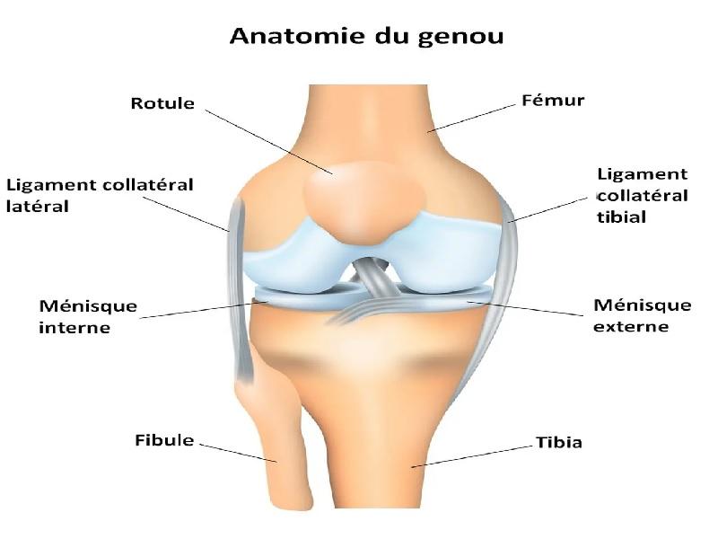 Chirurgie de genou 3 Turquie