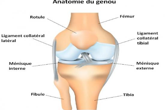 knee replacement in turkey,replacement,cost,total knee replacement,total,operation,turkey,istanbul,clinic,hospital,doctor,surgeon
