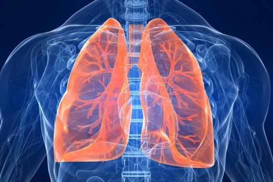 Lung Transplant 0 Turkey